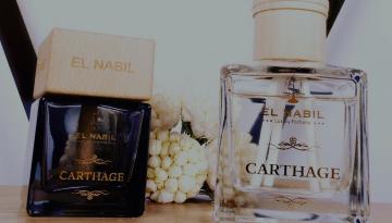 Parfums d'Intérieurs - Luxurious Fragrances
